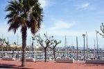 Олимпийский порт