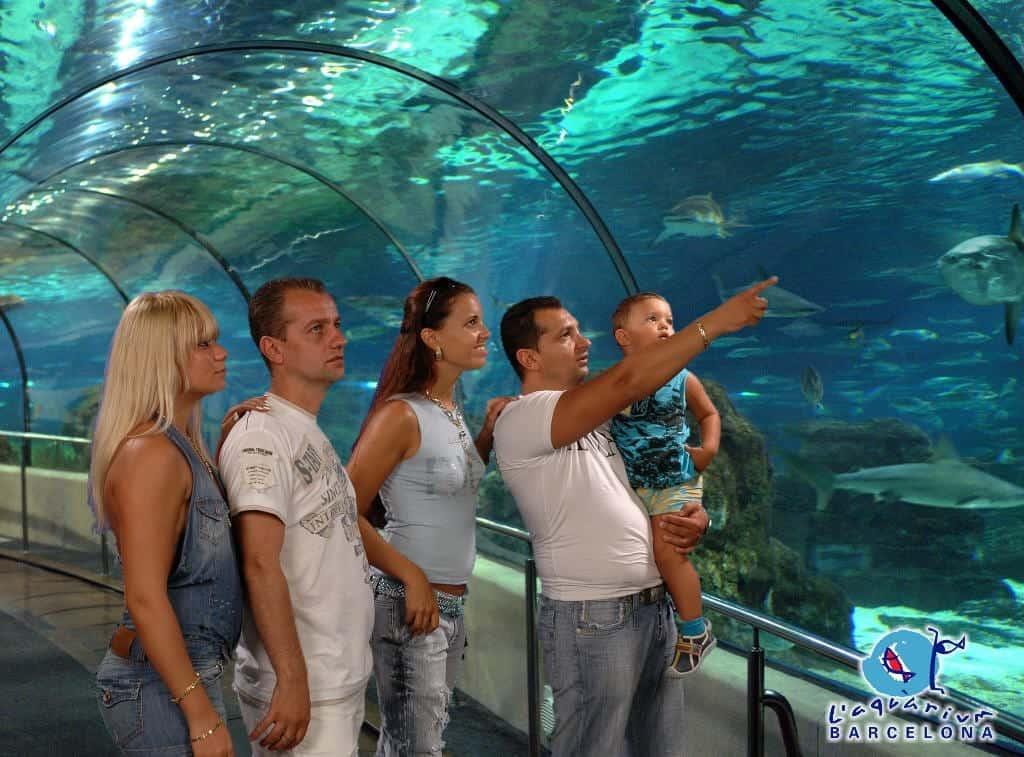 Тонель с акулами