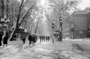 Снегопад в Барселоне (1962 год)