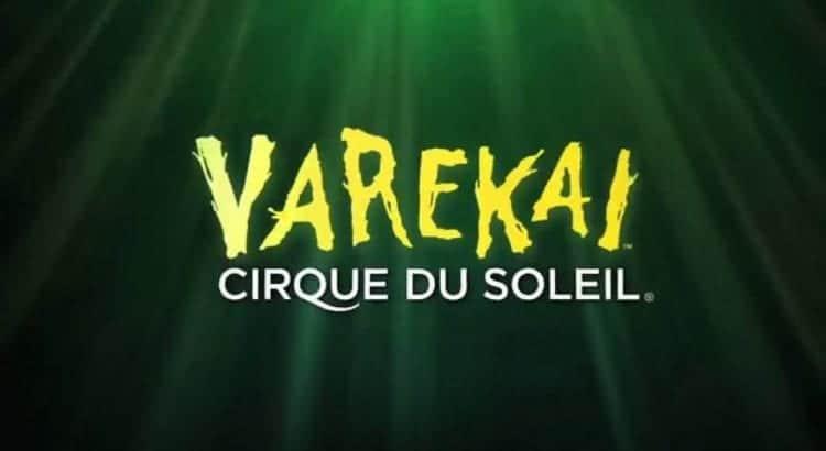 """Логотип шоу """"Varekai"""""""